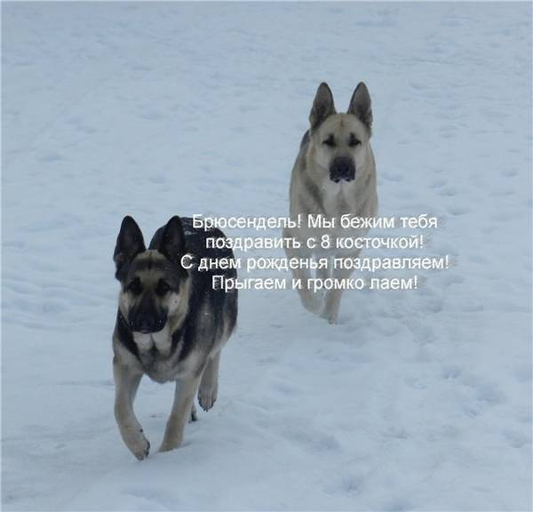 http://s0.uploads.ru/t/No2fk.jpg