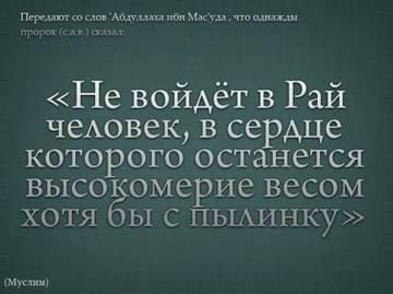 http://s0.uploads.ru/t/OHxyA.jpg