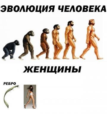 http://s0.uploads.ru/t/OiPKE.jpg