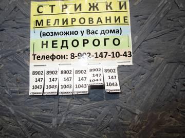 http://s0.uploads.ru/t/Qo7vs.jpg