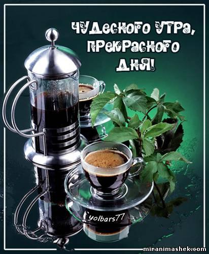 http://s0.uploads.ru/t/RCaSc.jpg