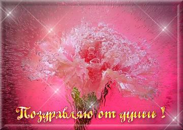 http://s0.uploads.ru/t/RWizF.jpg