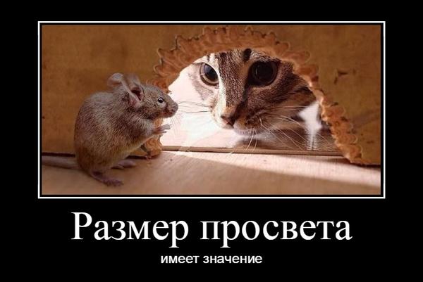 http://s0.uploads.ru/t/SBEo5.png