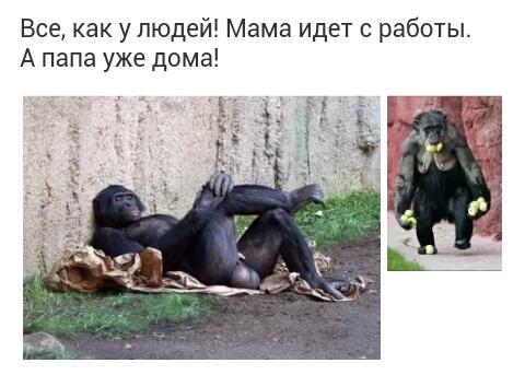 http://s0.uploads.ru/t/ST4Xk.jpg