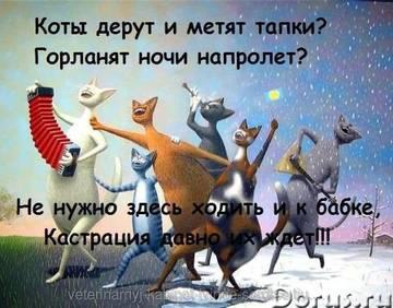 http://s0.uploads.ru/t/TDtIg.jpg