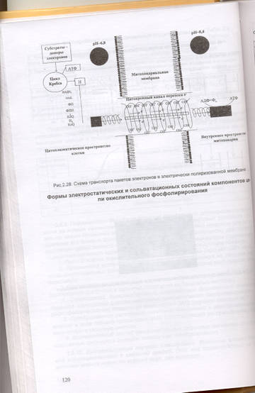 http://s0.uploads.ru/t/Ux8ma.jpg