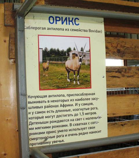 http://s0.uploads.ru/t/XsZIw.jpg