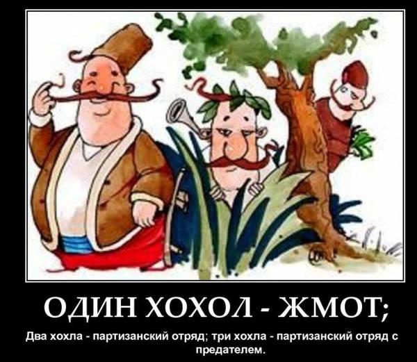 http://s0.uploads.ru/t/ZuLdG.jpg