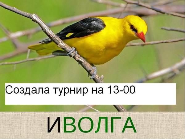 http://s0.uploads.ru/t/cKY6Z.jpg