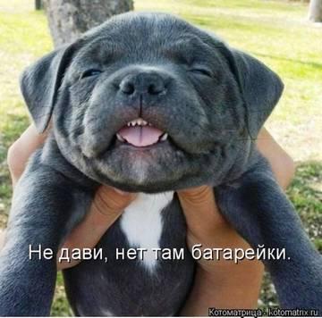 http://s0.uploads.ru/t/ewnuC.jpg