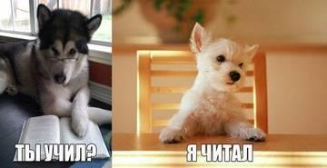 http://s0.uploads.ru/t/fb64E.jpg