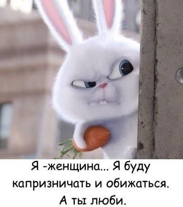 http://s0.uploads.ru/t/gAVKc.jpg