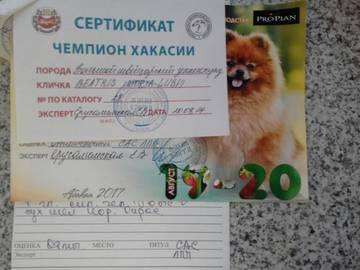 http://s0.uploads.ru/t/hEYJu.jpg
