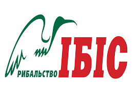 http://s0.uploads.ru/t/kcQyO.png