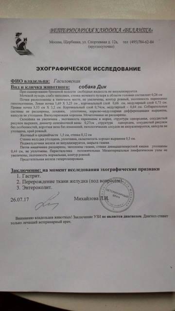 http://s0.uploads.ru/t/mkUsD.jpg