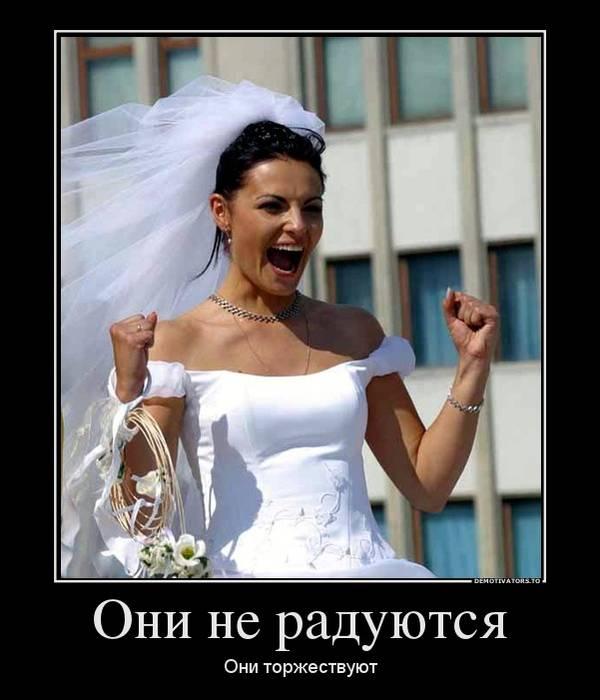 http://s0.uploads.ru/t/oNKgY.jpg