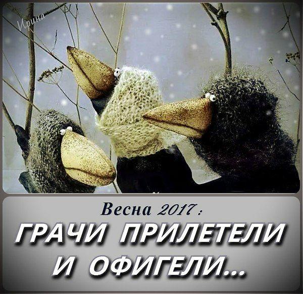 http://s0.uploads.ru/t/oO1Au.jpg