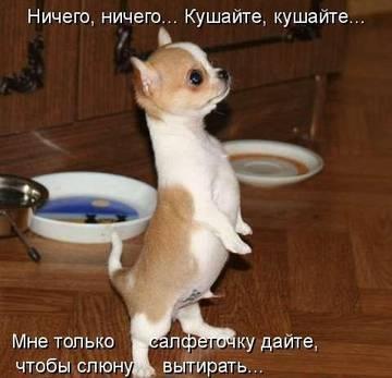 http://s0.uploads.ru/t/pCXwM.jpg