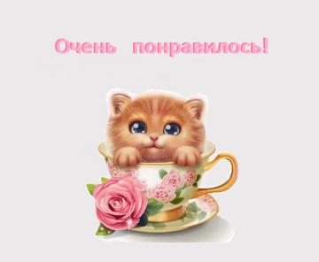 http://s0.uploads.ru/t/qoraE.png