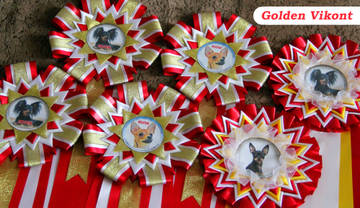 Наградные розетки на заказ от Golden Vikont REeSW