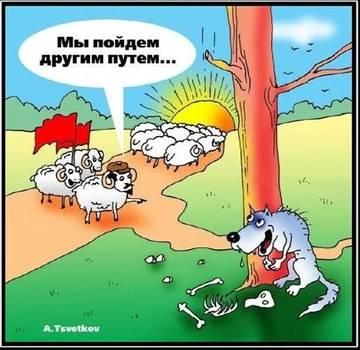 http://s0.uploads.ru/t/sRdpy.jpg