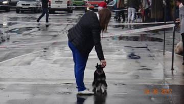 http://s0.uploads.ru/t/tuKnI.jpg