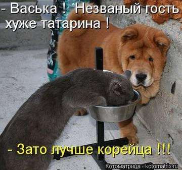 http://s0.uploads.ru/t/vHKzs.jpg