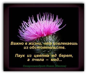 http://s0.uploads.ru/t/x3OVP.jpg
