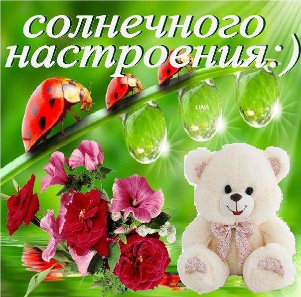 http://s0.uploads.ru/tFpRP.jpg