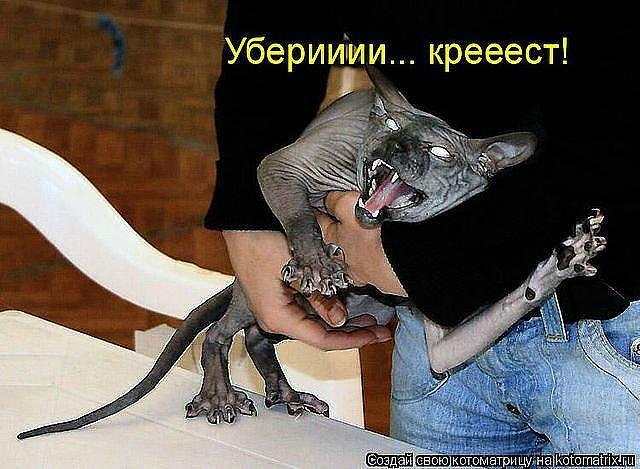 http://s0.uploads.ru/upveo.jpg