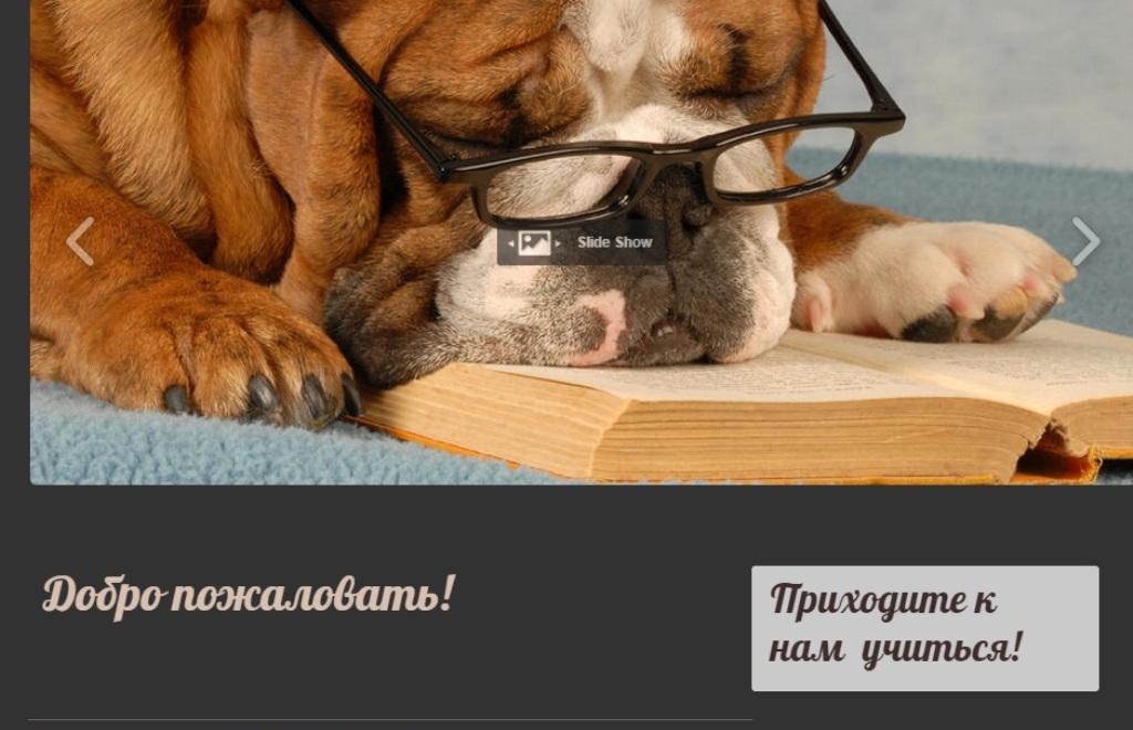 http://s0.uploads.ru/yMBAo.jpg