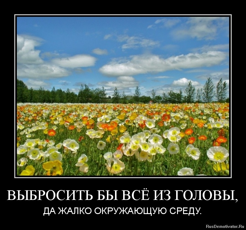 http://s0.uploads.ru/ySwTz.jpg