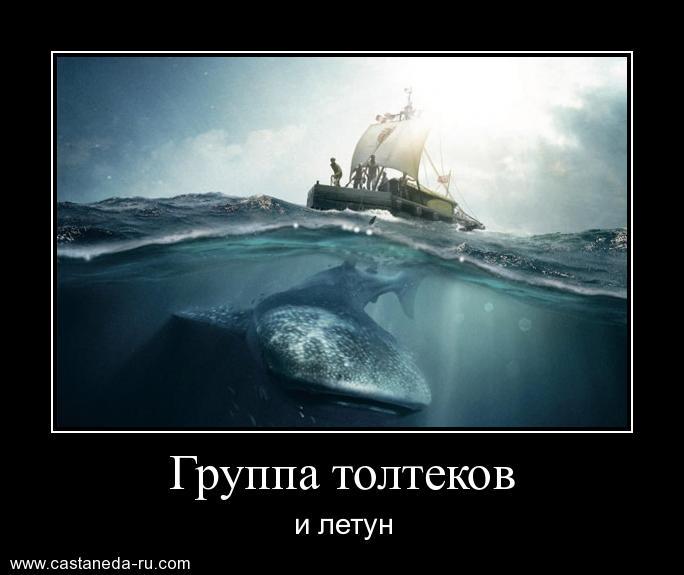http://s0.uploads.ru/9cCZi.jpg