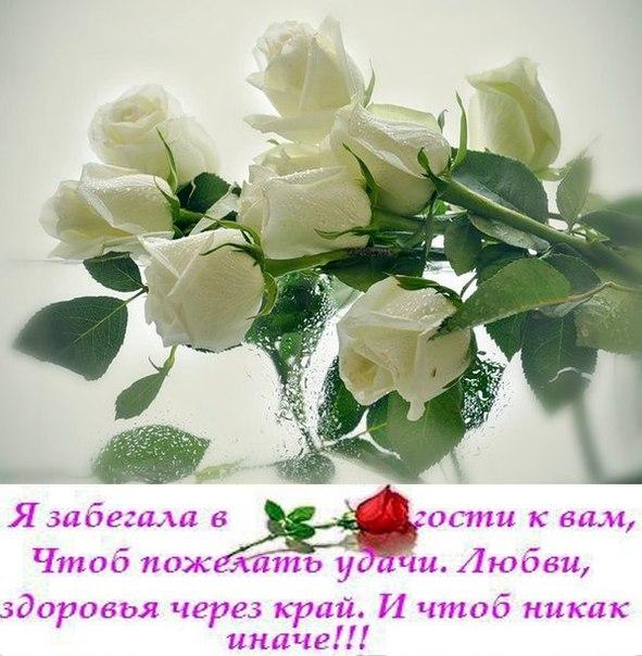 http://s0.uploads.ru/G8msg.jpg