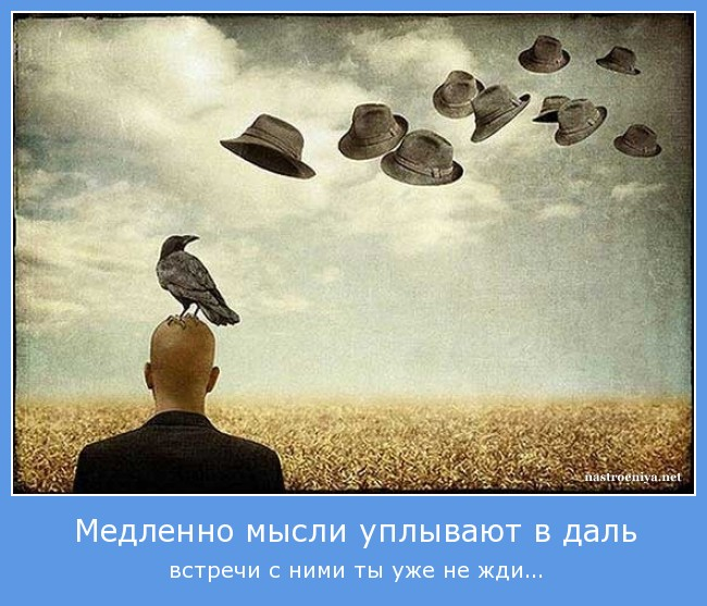 http://s0.uploads.ru/GrNOv.jpg