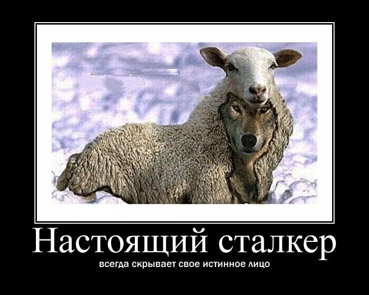 http://s0.uploads.ru/XMgDb.jpg