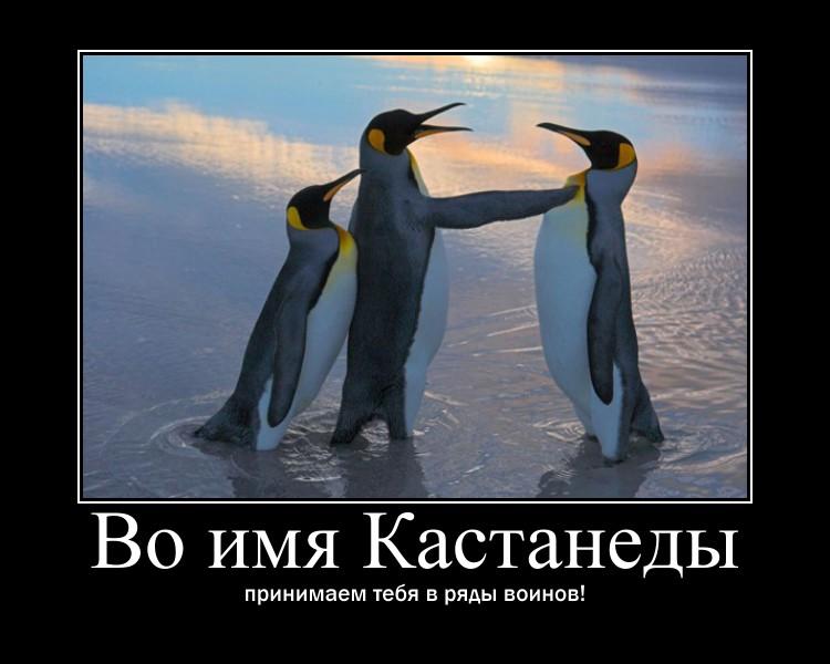 http://s0.uploads.ru/YZo29.jpg