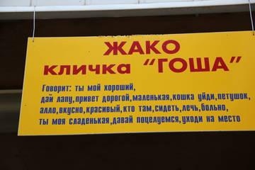 http://s0.uploads.ru/t/9qfLa.jpg