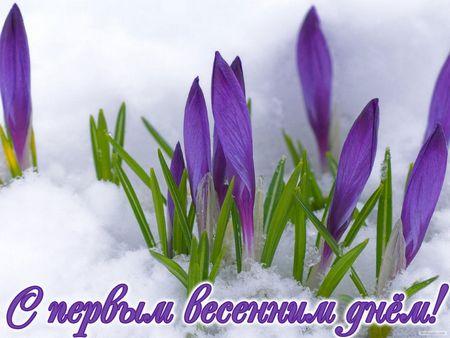 http://s0.uploads.ru/t/D5lLU.jpg
