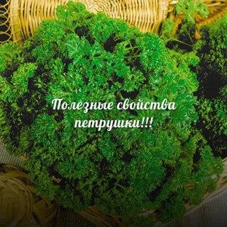 http://s0.uploads.ru/t/DtkVB.jpg