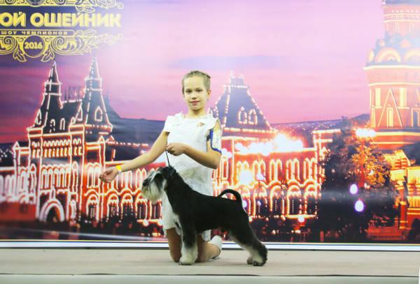 http://s0.uploads.ru/t/u6K34.jpg