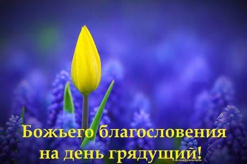 http://s0.uploads.ru/vpHQm.jpg